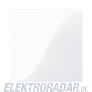 Merten Zentralplatte aws/gl 450025