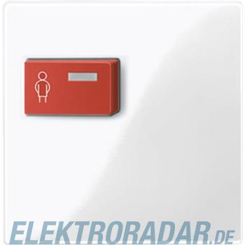 Merten Zentralplatte pws/gl 450119