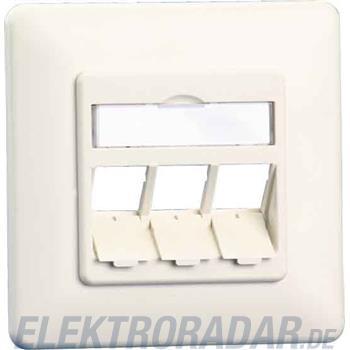 BTR Netcom Anschlussdose E-DAT 1309160001-E pws