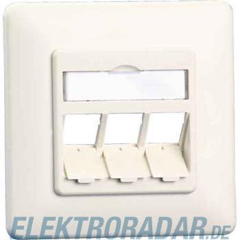 BTR Netcom Anschlussdose E-DAT 1309160002-E rws