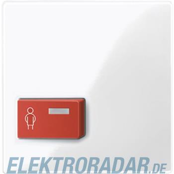 Merten Zentralplatte pws/gl 450419