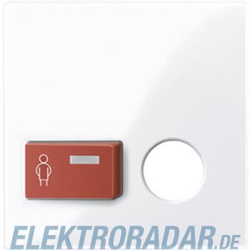 Merten Zentralplatte aws/gl 450625