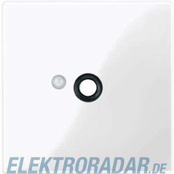 Merten Zentralplatte pws/gl 450819