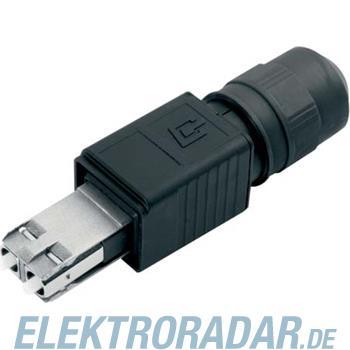 Telegärtner STX V4 2SC Steckerset J88083A0002