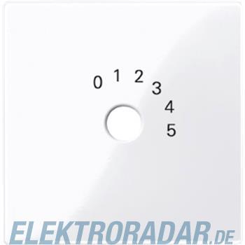 Merten Zentralplatte aws/gl 452025