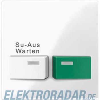 Merten Zentralplatte pws/gl 452119