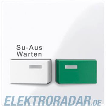 Merten Zentralplatte aws/gl 452125
