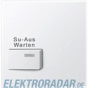Merten Zentralplatte pws/gl 452319