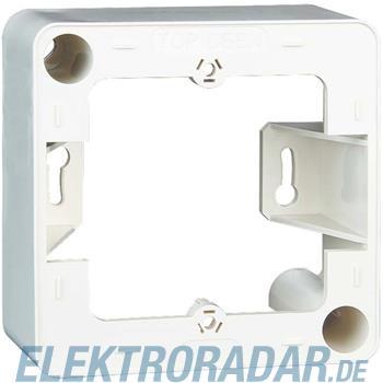 BTR Netcom AP-Rahmen 130829-4302-I rws
