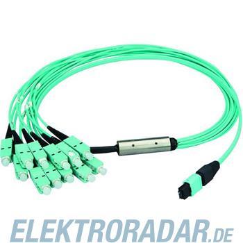Telegärtner MPO/MTP Aufteilkbl türk 1m L00830A0026