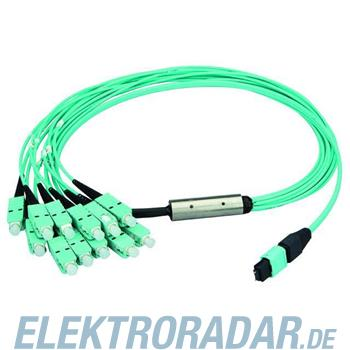 Telegärtner MPO/MTP Aufteilkbl türk 2m L00831A0026