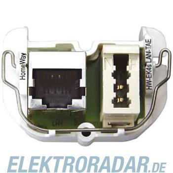 Homeway HW-EK4S LAN/TAE Modul HAXHSM-G0200-C042