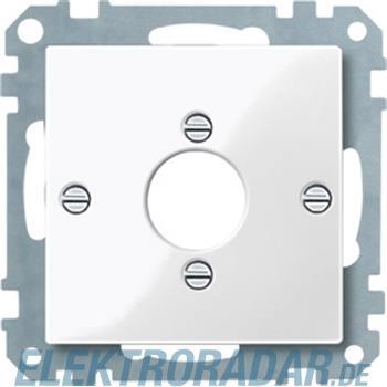 Merten Zentralplatte pws/gl 469019