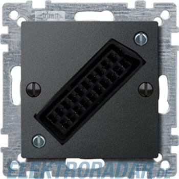 Merten Zentralplatte anth 469214