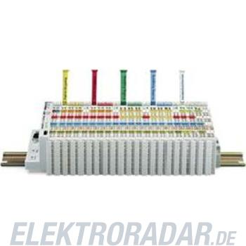 WAGO Kontakttechnik WSB-Bezeichnungskarte 247-516