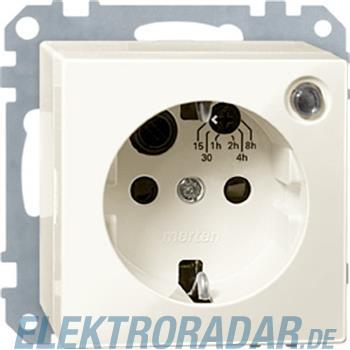 Merten Steckdosen-Einsatz ws/gl 501144