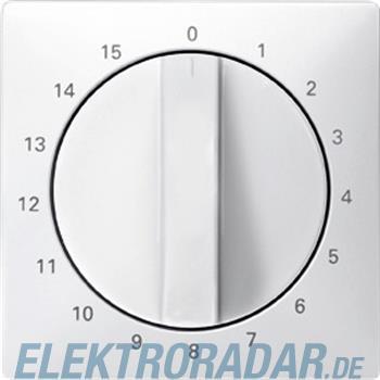 Merten Zentralplatte pws 538319