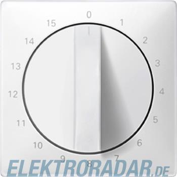 Merten Zentralplatte pws 538399