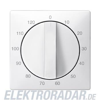 Merten Zentralplatte pws 538419