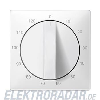 Merten Zentralplatte pws 538499