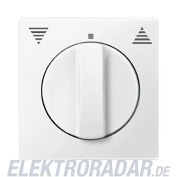 Merten Zentralplatte pws 538719