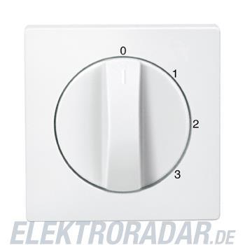 Merten Zentralplatte pws 538819