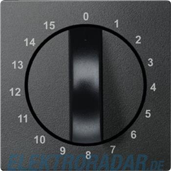 Merten Zentralplatte anth 539014
