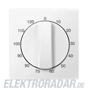 Merten Zentralplatte pws 539219