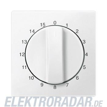 Merten Zentralplatte pws 539319