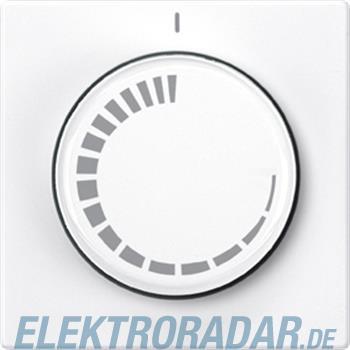Merten Zentralplatte pws/gl 539819