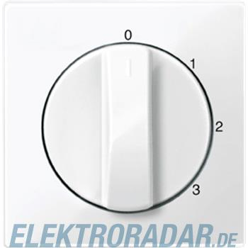 Merten Zentralplatte pws/gl 567219