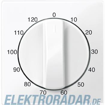 Merten Zentralplatte pws/gl 567519