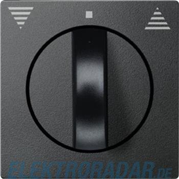 Merten Zentralplatte anth 569814