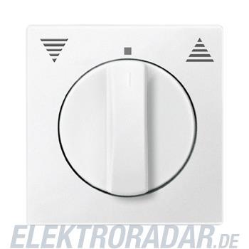Merten Zentralplatte pws 569819