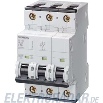 Siemens Leitungsschutzschalter 5SY7304-8