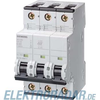 Siemens Leitungsschutzschalter 5SY8310-8BB08