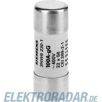 Siemens Zylindersicherung 3NW6230-1