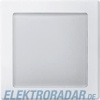 Merten Zentralplatte pws 587019