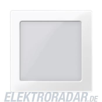 Merten Zentralplatte pws/gl 587419