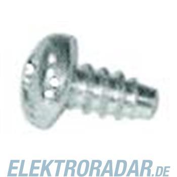 Striebel&John Schrauben ZB32P500(VE500)