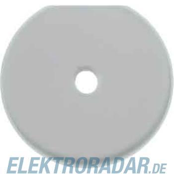 Berker Glasplatte 1094