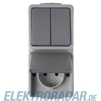 Berker Kombination lgr/gr 479005