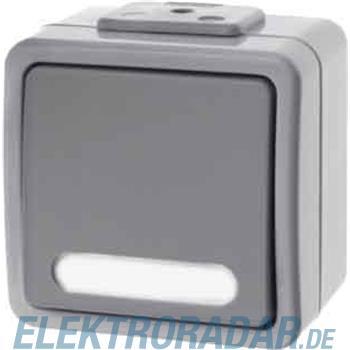 Berker AP-Wipptaster lgr/gr 507655