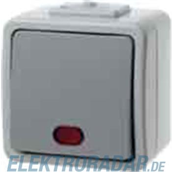 Berker AP-Wipptaster lgr/gr 507605