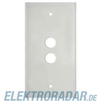 Berker Glasplatte 2fach 1392