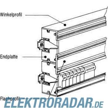 Striebel&John Endplatte ZK140