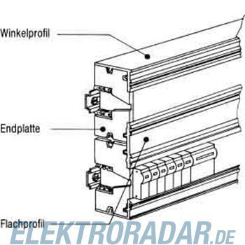 Striebel&John Winkelprofil ZK141