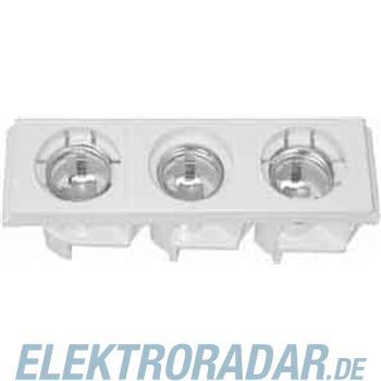 Striebel&John Reitersicherungsblock VE10 ZE62P10