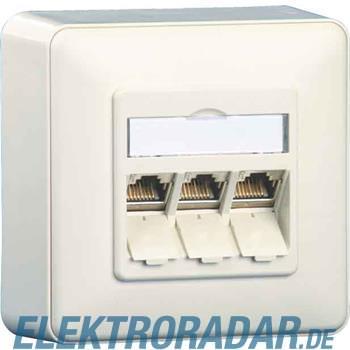 BTR Netcom Anschlussdose E-DAT AP 1309130002-E rws