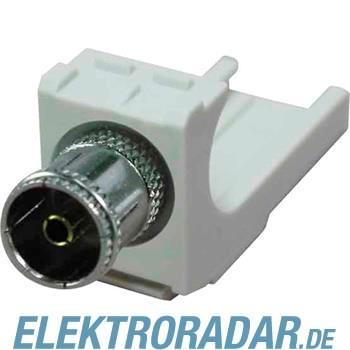 BTR Netcom KOAX modul IEC-Buchse 130898-02-I